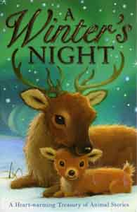 Winter's Night cover